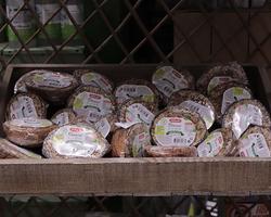 Agri Fallen - Aubagne - Accessoires et aliments pour oiseaux