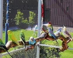Agri Fallen - Aubagne - Accessoires pour oiseaux de jardin