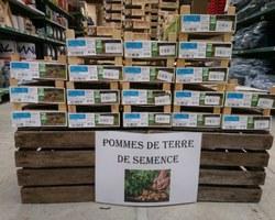 Agri Fallen - Aubagne - Plants, semences et graines potagères