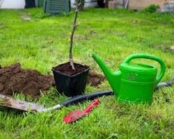 Agri Fallen - Aubagne - Outils de jardin