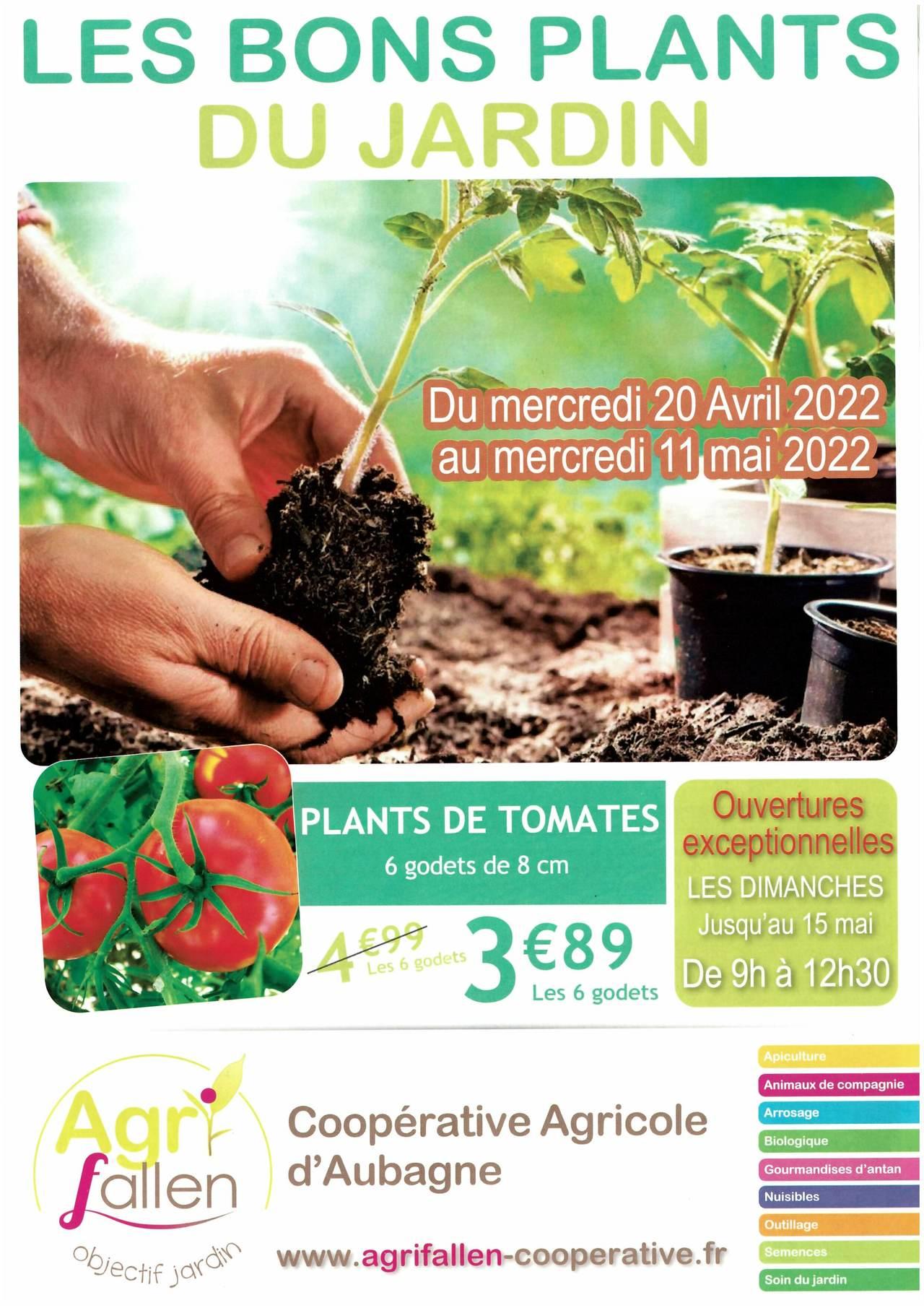 """les bons """"PLANTS"""" du jardin"""